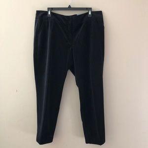 Liz Claiborne Classic Emma Ankle velvet Pants New